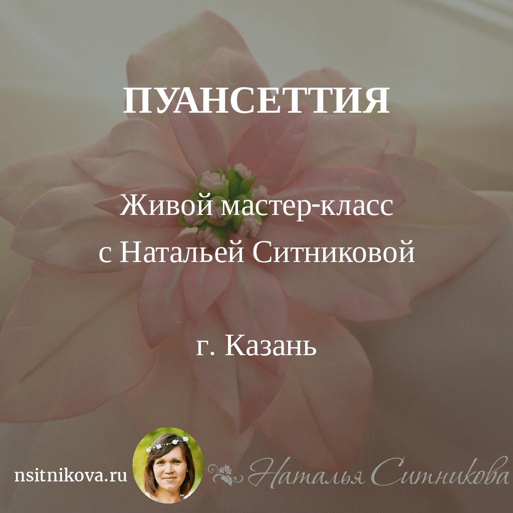 mk_kzn_puansetia_zip